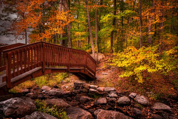 Fall Colors, Wooden Bridge, High Point State Park, New Jersey