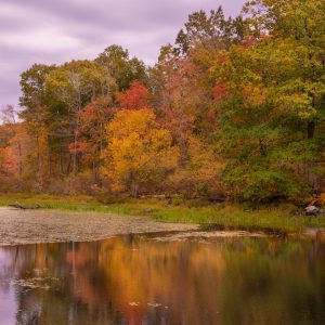 Fall Color Lake Reflections (Version 2)