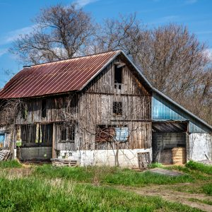 Old Rustic Barn in the Summer (Color)