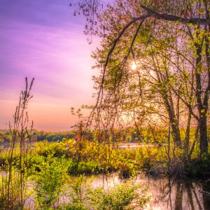 Springtime Sunset on the Pond, Landscape Photography