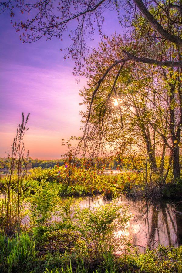 Springtime Sunset on the Pond, Landscape Photography