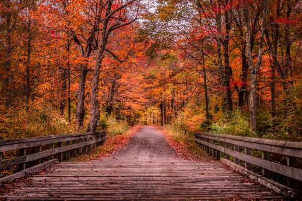 Fall Colors, Wooden Bridge, High Point State Park